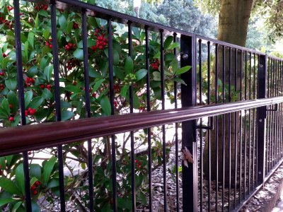 Metal railings complete with handrail