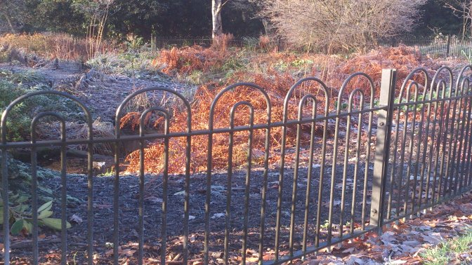 galvanized and powder coated mild steel 'Bow in Bow' Top Railings