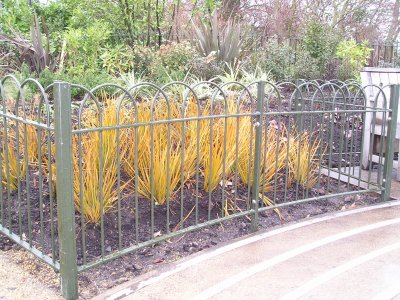 galvanized and powder coated bow top railings mild steel