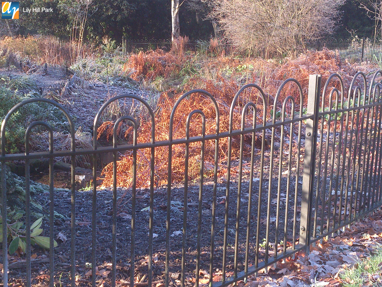 Lily Hill Park Holinwell bow top railings